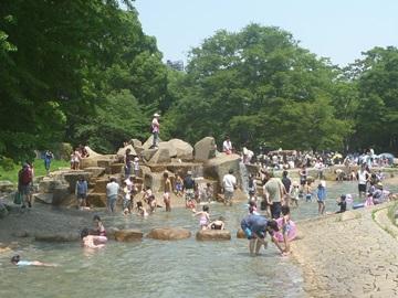 平塚総合公園じゃぶじゃぶ池