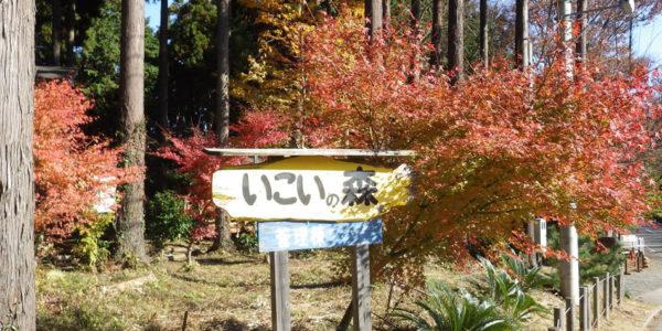 小田原市いこいの森