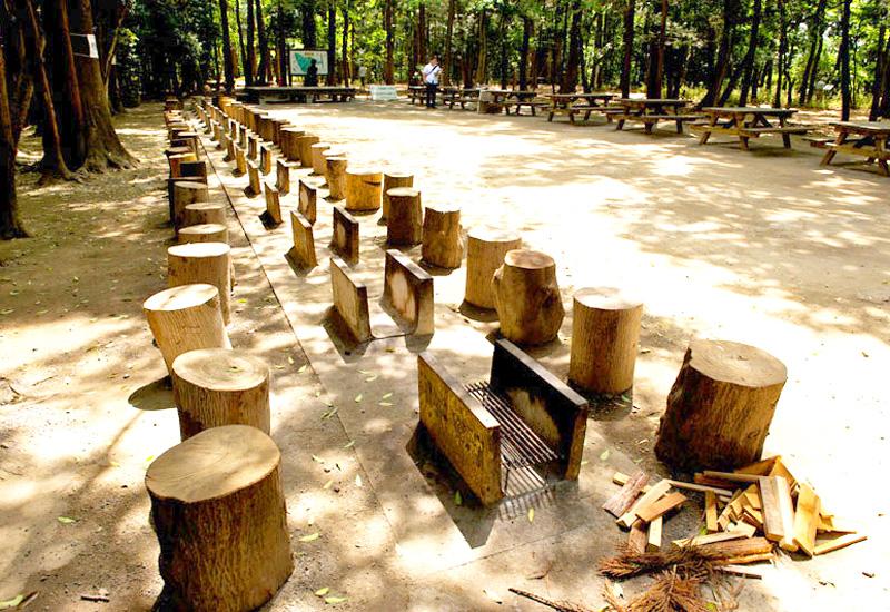 泉の森ふれあいキャンプ場