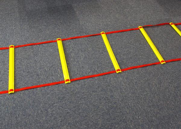 トレーニング用ラダー