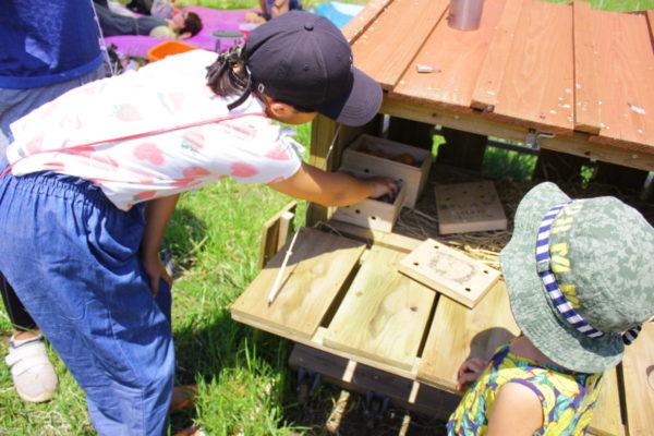鶏小屋から卵を回収