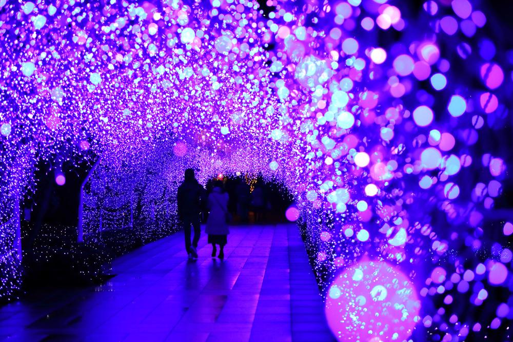 湘南の宝石2019ー2020 ~江の島を彩る光と色の祭典~開催期間:2019年11月23日(土)~2020年2月16日(日)