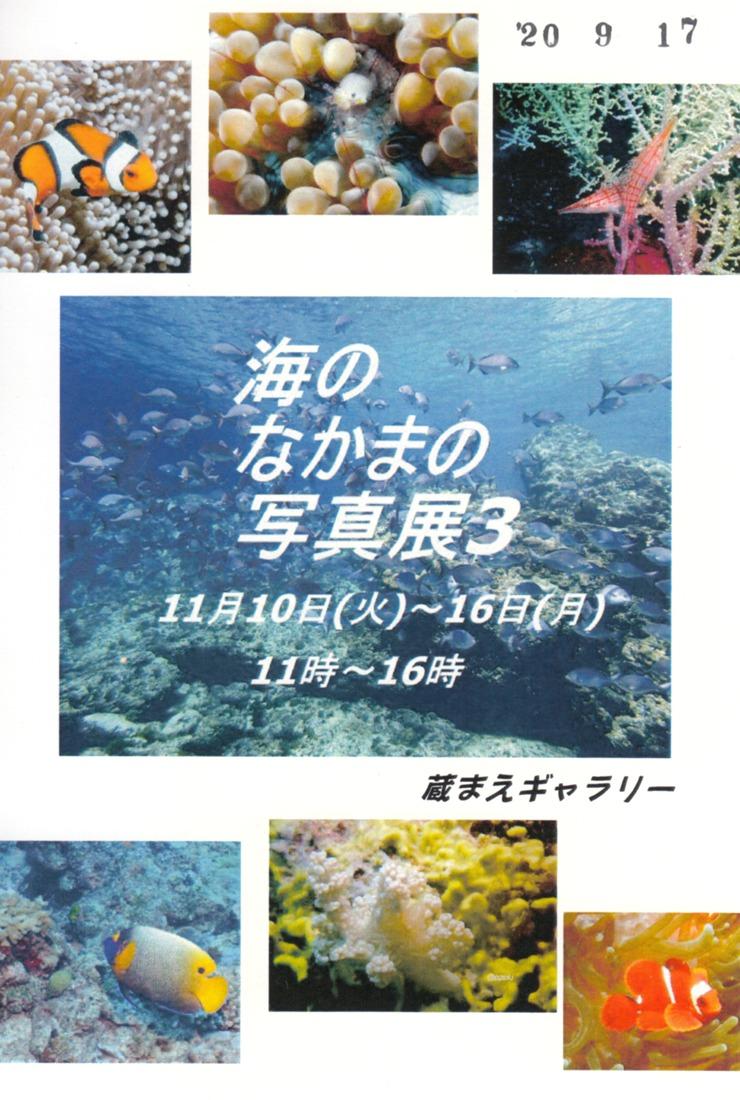 海のなかまの写真展