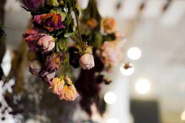 FlowersBreath12-600x399
